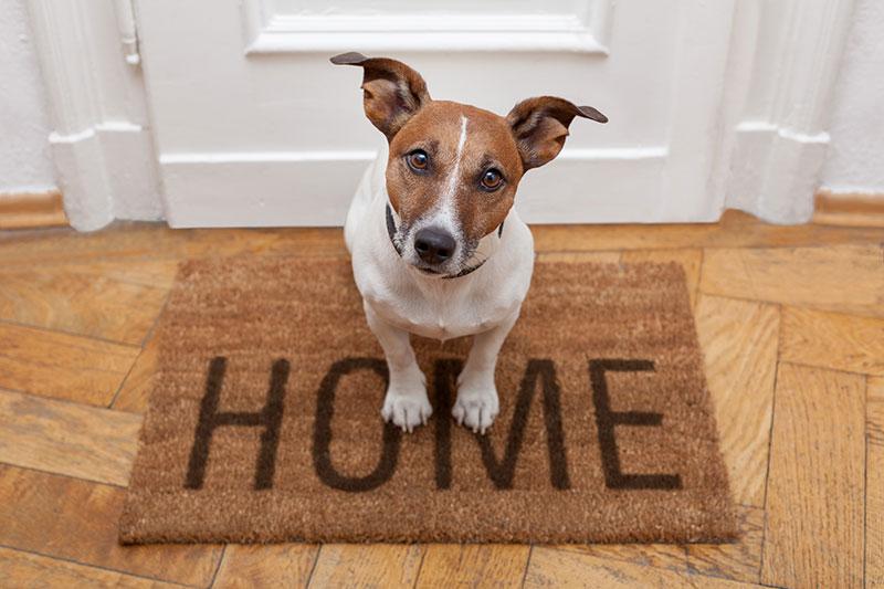 home furnishings macedon ranges